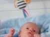20121028-lillfisen_09463